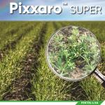 Inovație în agricultură: portofoliul complet de erbicide de la Corteva